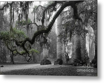 Oak Limb At Old Sheldon Church Metal Print by Scott Hansen