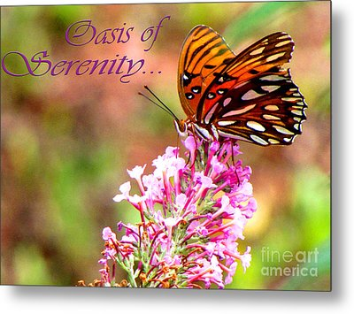 Oasis Of Serenity Metal Print by Gardening Perfection