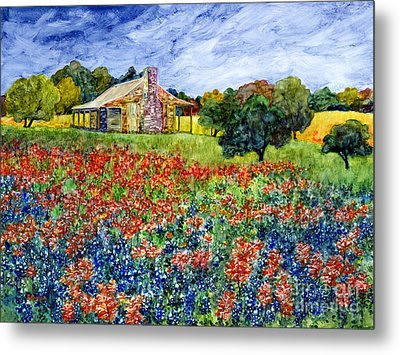 Old Baylor Park Metal Print by Hailey E Herrera