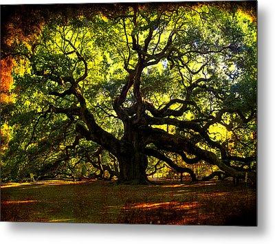 Old Old Angel Oak In Charleston Metal Print by Susanne Van Hulst