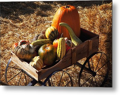 Old Wagon Full Of Autumn Fruit Metal Print by Garry Gay