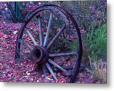 Old Wagon Wheel With Lizard Metal Print by Garry Gay