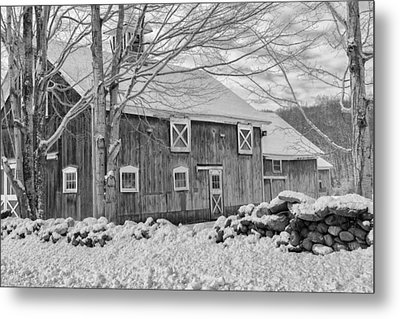 Old Winter Bw  Metal Print by Bill Wakeley