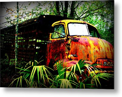 Ole Cow Truck Metal Print by Dana  Oliver