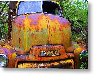 Ole Rusty Full Frontal Metal Print by Dana  Oliver
