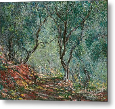 Olive Trees In The Moreno Garden Metal Print by Claude Monet