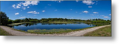 Ollies Pond In Port Charlotte, Florida Metal Print by Panoramic Images