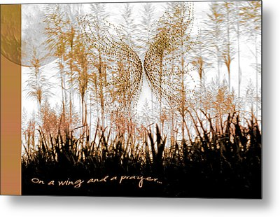 On A Wing And A Prayer Metal Print by Holly Kempe