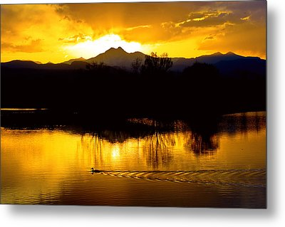 On Golden Ponds Metal Print by James BO  Insogna