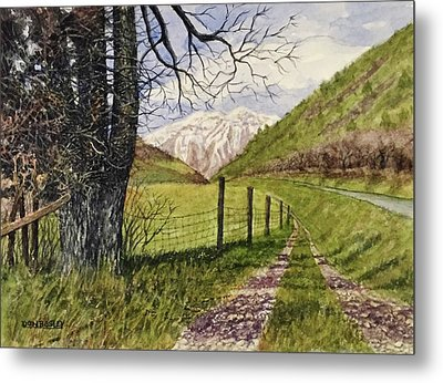 On South Fork Road Metal Print by Don Bosley