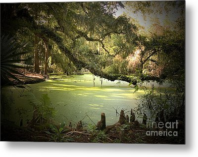 On Swamp's Edge Metal Print by Scott Pellegrin