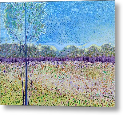 On The Grounds Of St Francis Metal Print by Karen Williams-Brusubardis