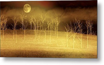 Only At Night Metal Print by Holly Kempe