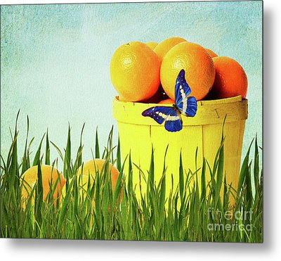 Orange Metal Print by Angela Doelling AD DESIGN Photo and PhotoArt