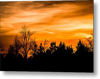 Orange Silhouettes Metal Print by Shelby Young