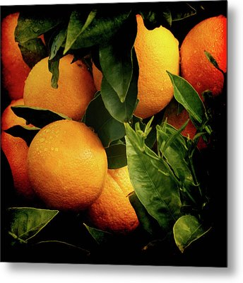Oranges Metal Print by Ernie Echols