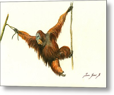 Orangutan Metal Print by Juan Bosco