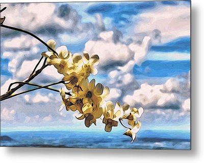 Orchid Flowers Metal Print by Alexandre Ivanov