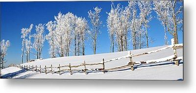 Ore Knob In Snow Panorama Metal Print by Alan Lenk