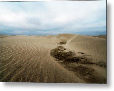 Oregon Dune Wasteland 1 Metal Print by Ryan Manuel