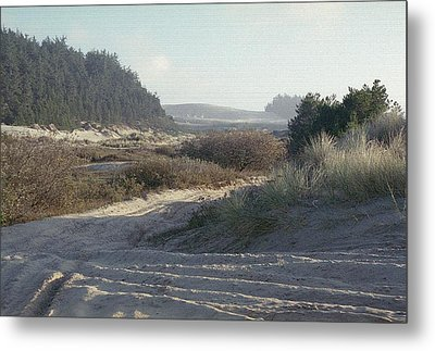 Oregon Dunes 5 Metal Print by Eike Kistenmacher