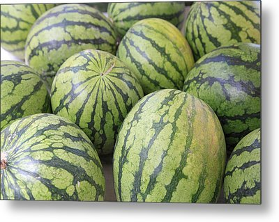 Organic Watermelon Metal Print by Wendy Connett