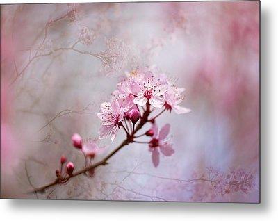 Oriental Blossom Metal Print by Jacky Parker