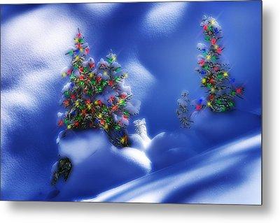 Outdoor Christmas Trees Metal Print by Utah Images