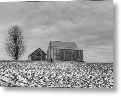 Overcast Bw Metal Print by Bill Wakeley