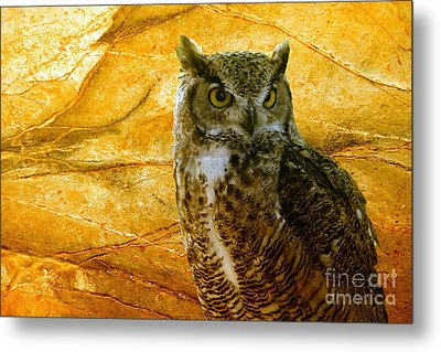 Owl Metal Print by Teresa Zieba