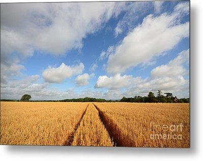 Oxfordshire Metal Print by Stephen Smith