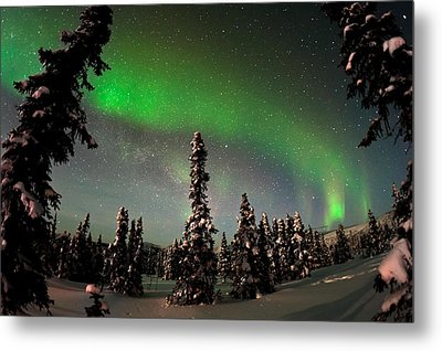 Painting The Sky With The Northern Lights Metal Print by Mike Berenson