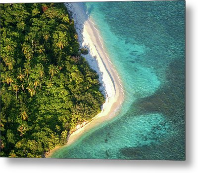 Palm Island In The Ocean Metal Print by Jenny Rainbow