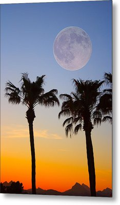 Palm Tree Full Moon Sunset Metal Print by James BO  Insogna