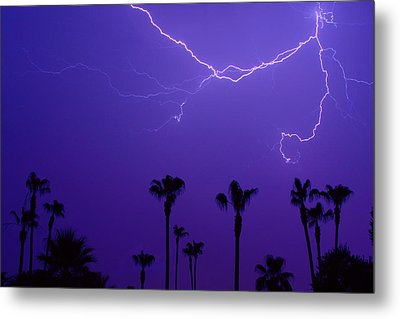 Palm Trees And Spider Lightning Striking Metal Print by James BO  Insogna