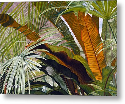 Palms At Fairchild Gardens Metal Print by Stephen Mack