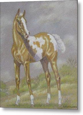 Palomino Paint Foal Metal Print by Dorothy Coatsworth