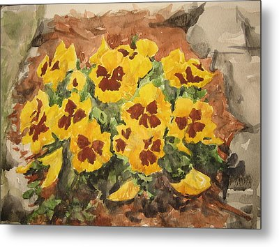 Pansies Metal Print by Becky Noble