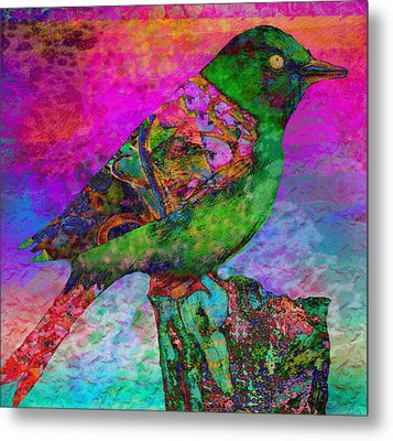 Paradise 1 Metal Print by Robin Mead