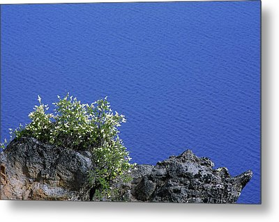 Paradise For Backpackers - Crater Lake In Crater National Park - Oregon Metal Print by Christine Till