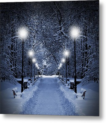 Park At Christmas Metal Print by Jaroslaw Grudzinski