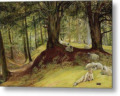 Parkhurst Woods Metal Print by Richard Redgrave