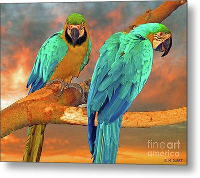 Parrots At Sunset Metal Print by Michael Durst