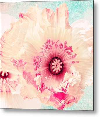 Pastell Poppy Metal Print by Angela Doelling AD DESIGN Photo and PhotoArt