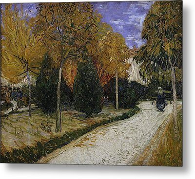 Path In The Park At Arles Metal Print by Vincent Van Gogh