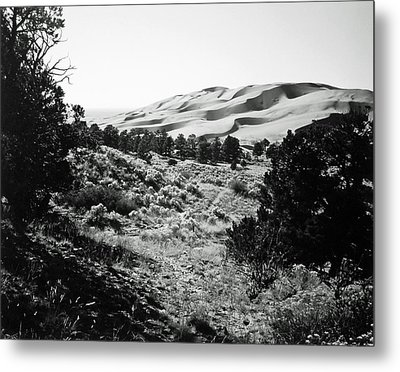 Path To The Dunes Metal Print by Allan McConnell