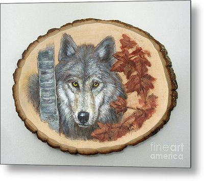 Wolf - Paths To Balance Metal Print by Brandy Woods