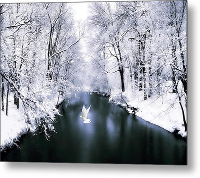 Peace On Earth 2 Metal Print by Jessica Jenney