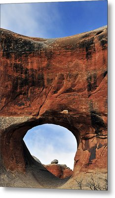 Peek A Boo Metal Print by Skip Hunt