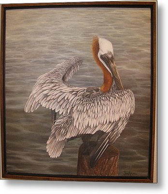 Pelican 3 Brown Metal Print by Judy Merrell